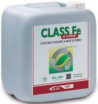 CLASS Fe G-FORM